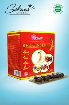 Hình SP Sakura Red Ginseng (60V)