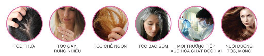 Sakura Beauty Hair's Direction